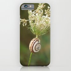 summersnail Slim Case iPhone 6s