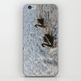 Black Swans in Melbourne iPhone Skin