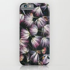 Mimosa Blossoms  iPhone 6s Slim Case
