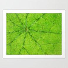 Green Leaf Veins 03 Art Print