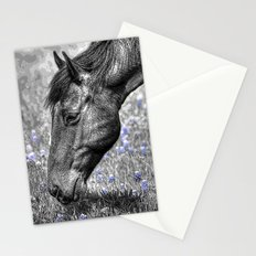 Horse & Bluebonnets Stationery Cards