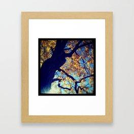 autumn 2 Framed Art Print