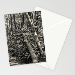 Fallen #2 Stationery Cards