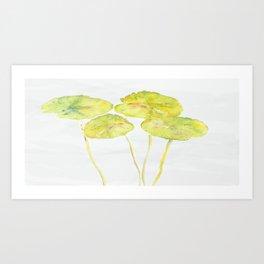 lotus leaves Art Print