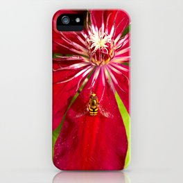 Flowers & bugs RED PASSION FLOWER & HOVERFLY iPhone Case