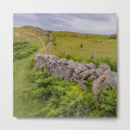 Walking the Welsh Coastal Path Metal Print
