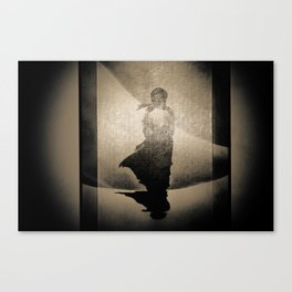 'IMG 2662' by TDL Canvas Print