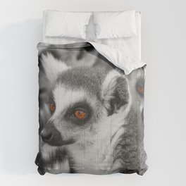 #Funny #Animals from #Madagascar Comforters