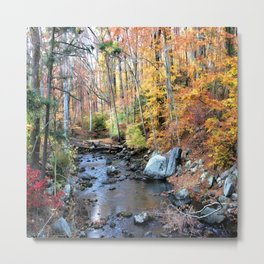 Autumn Woodlands Metal Print