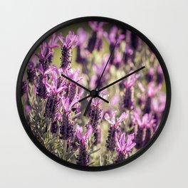 Fields of Lavender Wall Clock