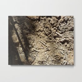 Spiral shell fossil rock Metal Print