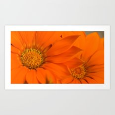 Double orange. Art Print