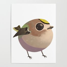 Tiny fat goldcrest Poster