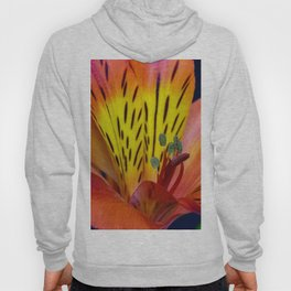 Single Alstroemeria Inca Flower-1 Hoody