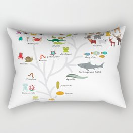Evolution in biology, scheme evolution of animals on white. children's education back to scool Rectangular Pillow