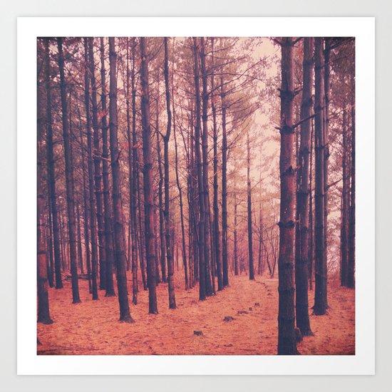 Vintage Pines Art Print