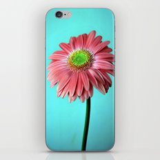 Spring vibes iPhone Skin