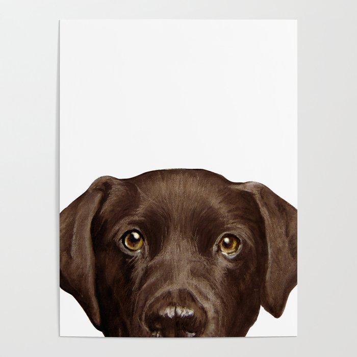 Labrador Chocolate original illustration by miart Poster