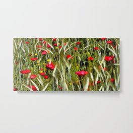 Red Poppies In A Cornfield Metal Print