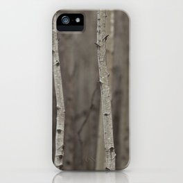 Canadian Prairies 11 iPhone Case
