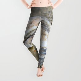 Shell in the Sand Leggings
