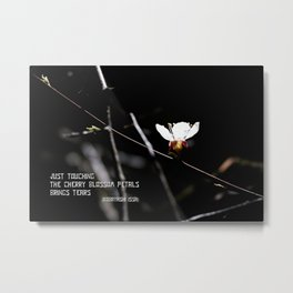 Sakura flowers on black 03 Metal Print
