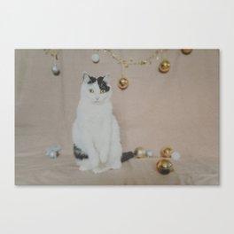 Sad Christmas Cat Canvas Print