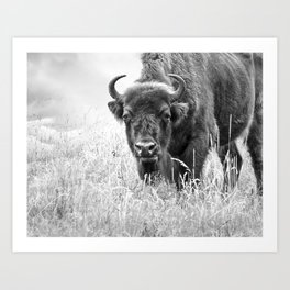 under observation - black'n white Art Print