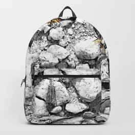bee and gravel Backpack