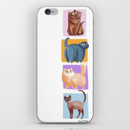 4 Coots iPhone Skin