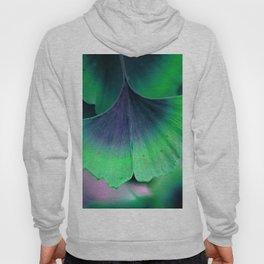 Ginkgo leaf Hoody