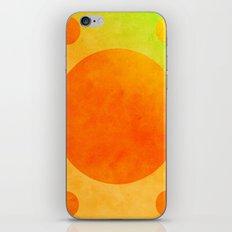 Circles iPhone & iPod Skin