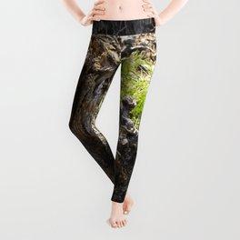 Twisted Stump Leggings