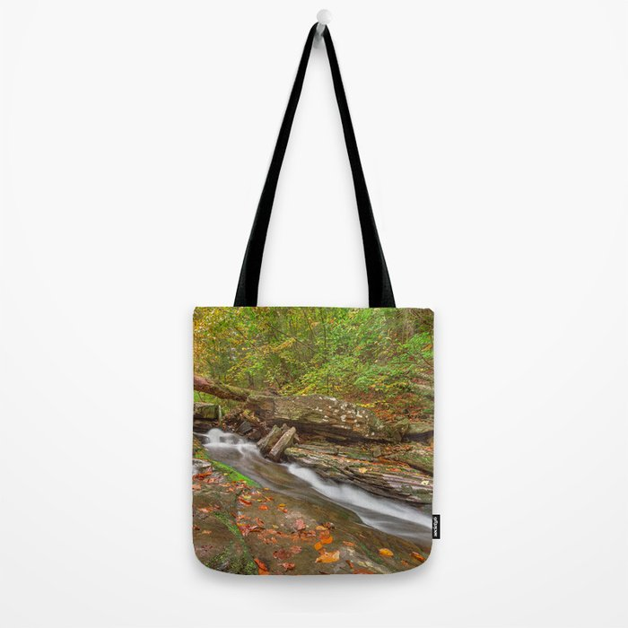 Ricketts Glen Autumn Stream Tote Bag