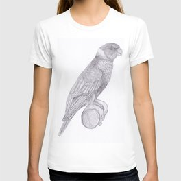 Lorikeets Bird drawing T-shirt