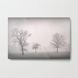 Trees in Fog 2 Metal Print