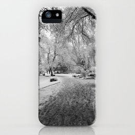 Into the Winter Park iPhone Case