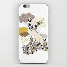Chihuahua iPhone & iPod Skin
