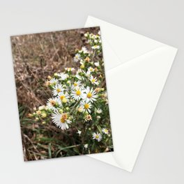 Tennessee Daisies Stationery Cards