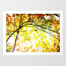 Lovely Autumn Leaves Tree Branch Nature - Canvas Texture Art Print