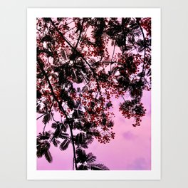 Red Tropical Blooms at Pink Sunset Art Print