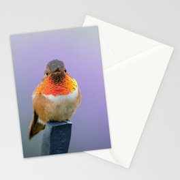 Rufous Hummingbird with lavender background Stationery Cards