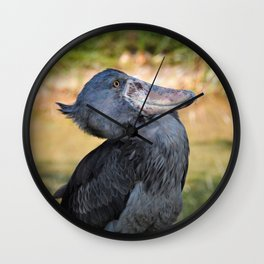 Shoe-Billed Stork Wall Clock