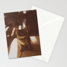 Kitten of the Souk Stationery Cards