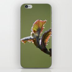 Dew in Spring - A Nature Art Print iPhone & iPod Skin