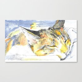 Sleeping Ohko Canvas Print