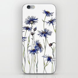 Blue Cornflowers, Illustration iPhone Skin