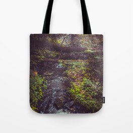 Stream at Little Pond Tote Bag