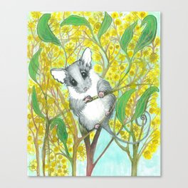 Possum Love Canvas Print