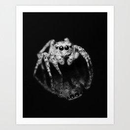 Spider Reflection Art Print